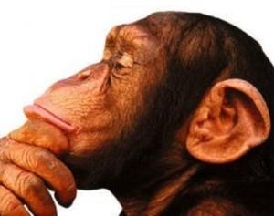 Podemos acreditar em Deus e na Evolução? (Ted Peters e Martinez Hewlett)