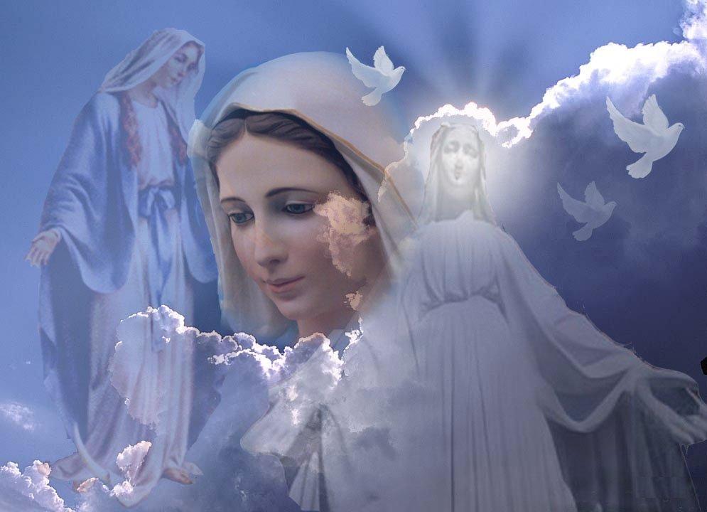 Maria Imaculada como resposta à poluição no âmbito da ecologia espiritual