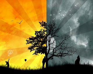 Dualismos e Dualidades